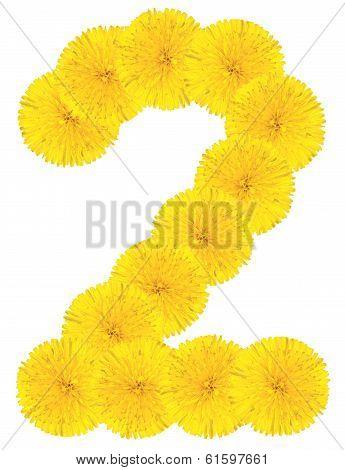 Number 2 Made From Dandelion Flower