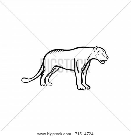 Vector illustration : Panther on a white background. poster