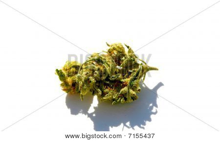 Nugg of Weed