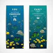 Scuba diving vertical banner set with fishes underwater isolated vector illustration poster