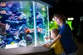 Happy laughing boy and his adorable toddler sister cute little curly girl watching fishes in a tropical aquarium with coral reef wild life having fun together on a day trip to a modern city zoo poster