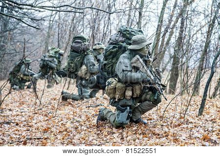 Group of jagdkommando soldiers Austrian special forces during the raid poster