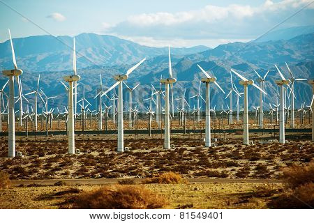 Wind Turbines Powerplant