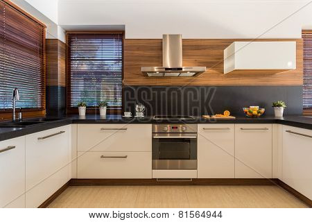 Modern Furniture In Luxury Kitchen