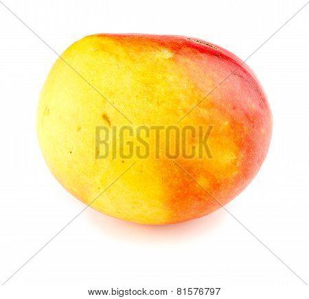 Macro Closeup Of Calypso Mango Isolated