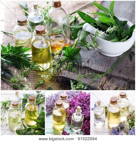 Collage From Photos With  Essential Aroma Oil.
