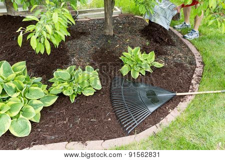 Man Spreading Mulch In The Garden