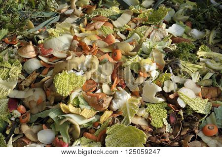 Household raw food waste, vegetables fruit peel and green refuse frecycling on a garden compost heap.