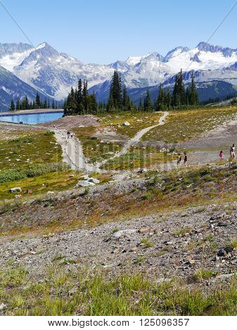 Hiking Trails at the top of Whistler Mountain
