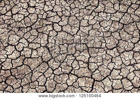 Dried earth in the Krasnodar region which resembles the surface of Mars