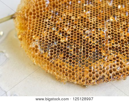 Honeycomb With Honey.shallow Depth Of Field.