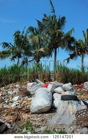 BALI, INDONESIA - April 10, 2016: Illegally-dumped garbage and plastic bags contaminate agricultural farmland at an unofficial waste-recycling center near the tourist resort of Ubud, Bali, Indonesia.