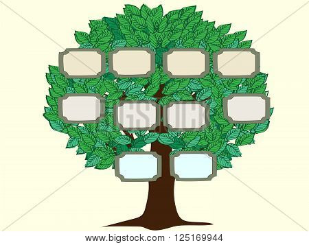 Family tree couple vector background. Green tree with frames for photos or text. Vector illustration of a pedigree person