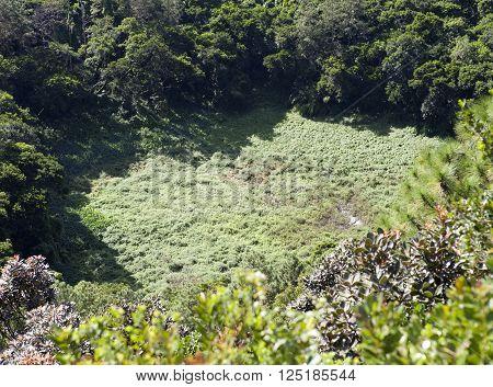 famous Mauritius tourist place- volcano crater Trou aux Cerfs- panorama