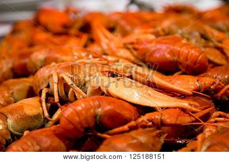 closeup boiled craw fish for background uses