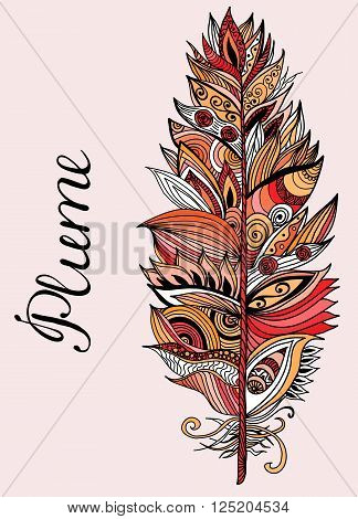 Color hand drawn plume with lettering. Vector illustration.