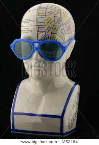 Phrenology Head Wearing Sunglasses