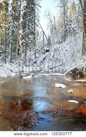 Winter forest stream. River in a snowcovered forest landscape.