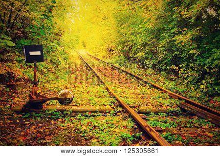 beautiful rail sliding rail to rail autumn
