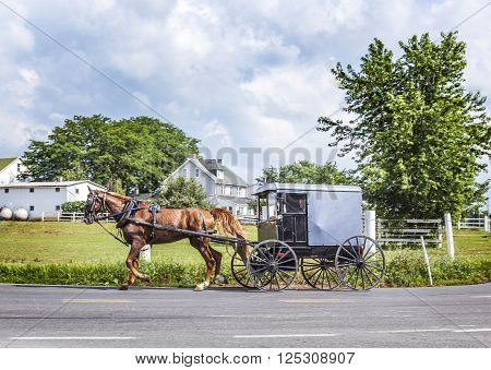 A Horse Pulling A Cart Across A Beautiful Saskatchewan Landscape
