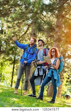 Young hikers looking at the way in distance through forest