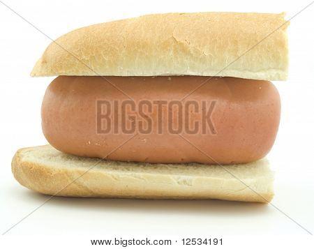Huge Sausage Between Rolls
