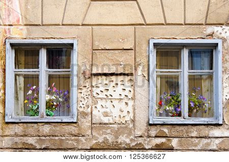 LJUBLJANA SLOVENIA - JULY 9 2009: Flower pots behind two decadent wooden windows