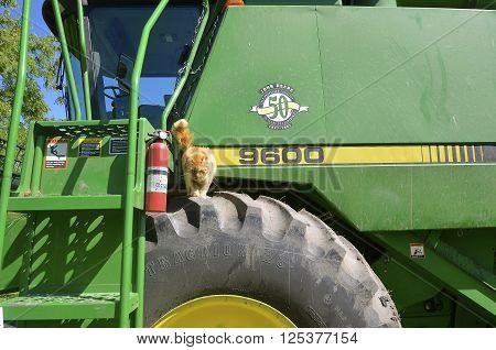GEORGETOWN, MINNESOTA, July 28, 2015: A self propelled combine with a cat visitor is a  a product of John Deere Co, an American corporation that manufactures agricultural, construction, forestry machinery, diesel engines, and drivetrains.