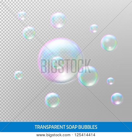 Transparent soap bubbles. Realistic soap bubbles. Rainbow reflection soap bubbles. Isolated vector illustration