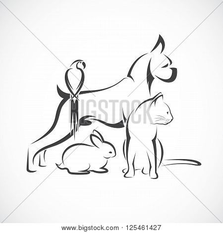 Vector group of pets - Dog cat bird rabbit isolated on white background