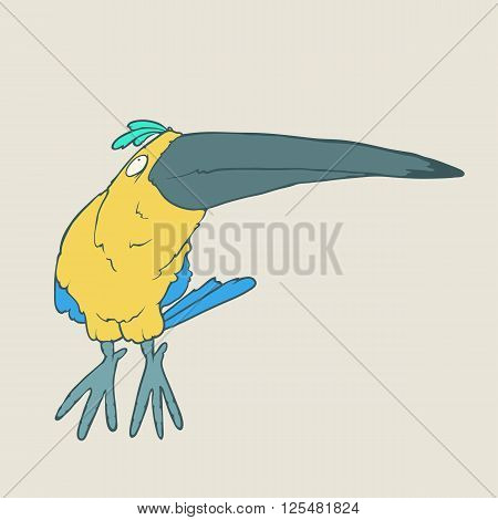 Illustration of hand drawn funny parrot or toucan bird. Color Vector cartoon. Concept of the character on flat background.