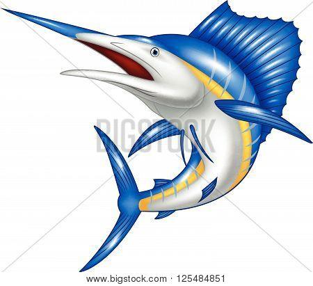 Vector illustration of blue marlin fish cartoon