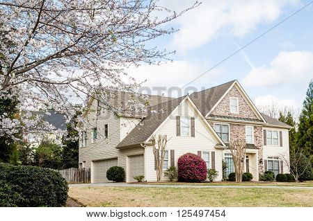 Modern stone and siding house with blooming cherry tree in yard