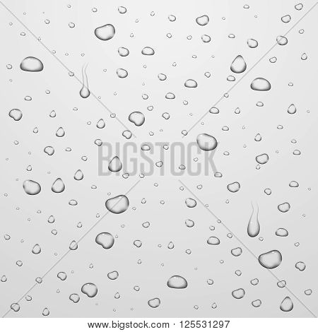 Vector backgrounds with water drops on glass. Water liquid drop, drop transparent, clean rain drop illustration