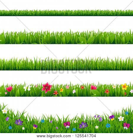 Grass Borders Set With Gradient Mesh, Vector Illustration