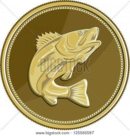 Illustration of a barramundi or Asian sea bass (Lates calcarifer) jumping viewed from the side set inside gold brass coin medallion done in retro style.
