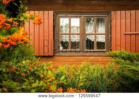 Dirty windows and shutters in the wooden house with blurred rowan fruit on the foreground, the countryside