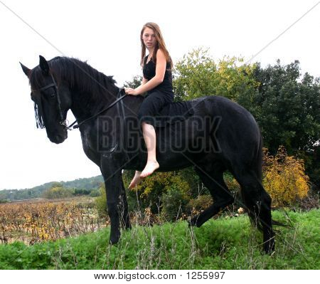 young woman sexy and her friend black stallion poster