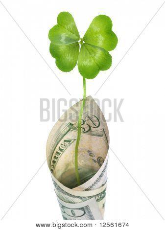 Four Leaf Clover in 100 US Dollars banknote