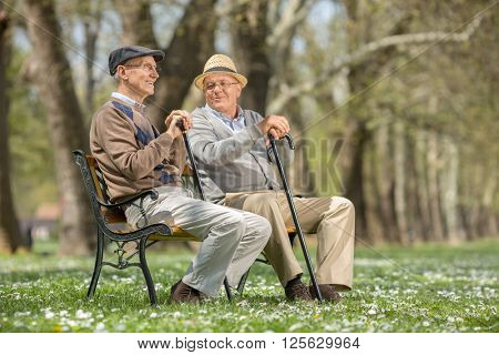 Two old friends sitting on a wooden bench in park and talking to each other