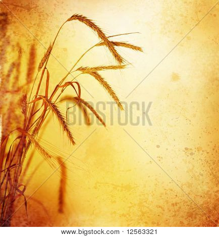 Retro Wheat Ears