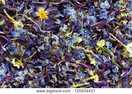 the background texture is a mixture of dry multi-colored flower petals. space for text