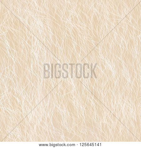 Dog, Bear Long Fur. Digital Animal Beige Skin Illustration.
