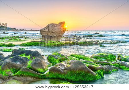Sunrise over ancient fossil reef giant stone beautiful when he releases the sun shining pearl sky orange, green moss beneath the sparkling beach all day to welcome a beautiful new Vietnam coast