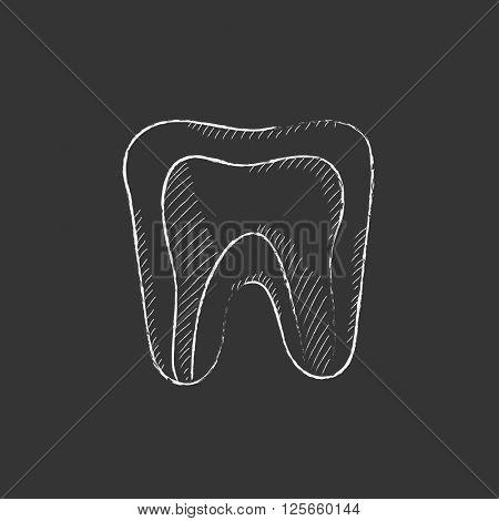 Molar tooth. Drawn in chalk icon.