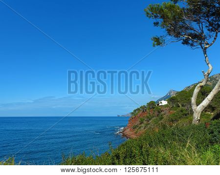 lonesome house in the cliff coast with a view to the sea