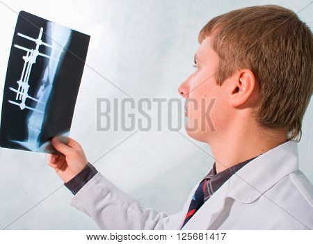 Veterinary Surgeon Examining X Ray In Surgery