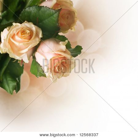 Beautiful Roses border.Sepia toned