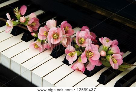 Flowering quince tree on piano - condolence card