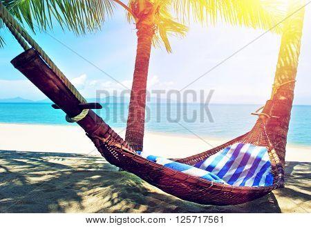 Empty hammock between palms trees at sandy beacha